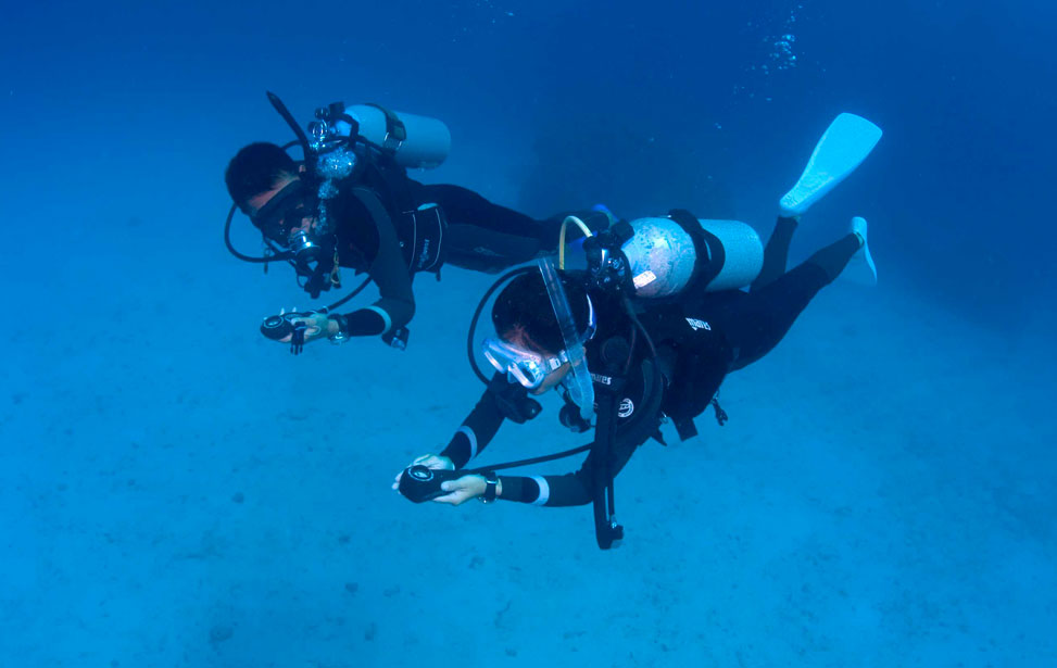 Necessary Equipment For Scuba Diving