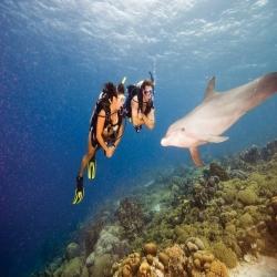 scuba-try-it
