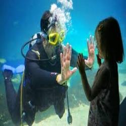 aquarium-dive-dates