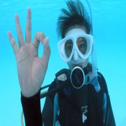 Self-reliant Diver Course